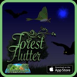 ForestFlutterMarketing1
